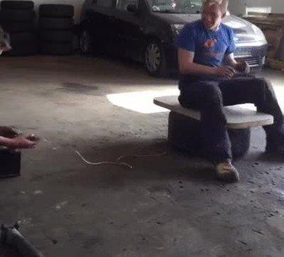 Enlace a Eso te pasa por jugar con los airbags del coche