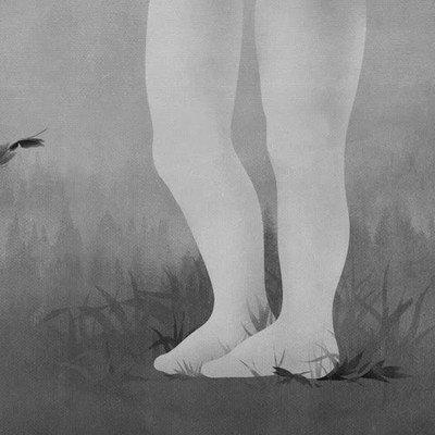 Enlace a No volveré a ver las rodillas humanas de la misma forma