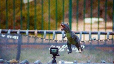 Enlace a Puede que así se extinguieran los dinosaurios