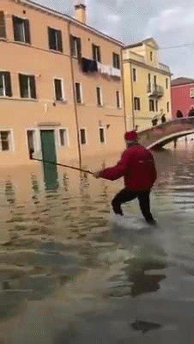 Enlace a Las cosas han cambiado mucho en Venecia ultimamente