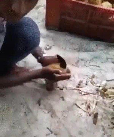 Enlace a Alucino con este truco para cortar patatas
