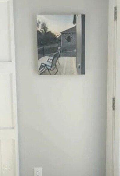 Enlace a ¿Qué sentido tiene un cuadro de lo que tienes en la ventana?