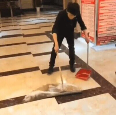 Enlace a Así limpia el suelo un profesional