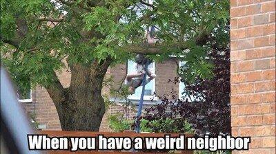 Enlace a Todos tenemos un vecino que es un poco raro