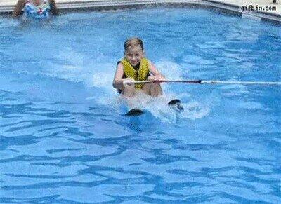 Enlace a Perros que no soportan que te lo pases bien en la piscina