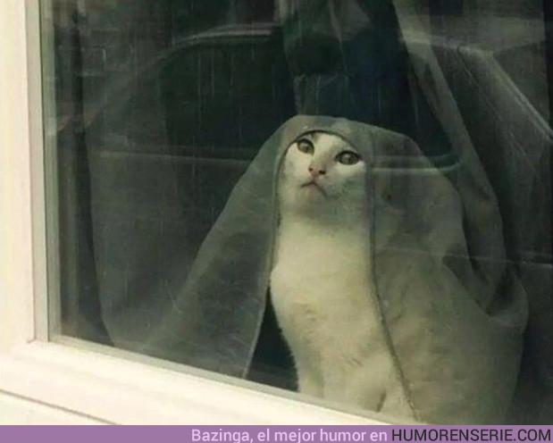 20205 - Dile a Cersei que fui yo