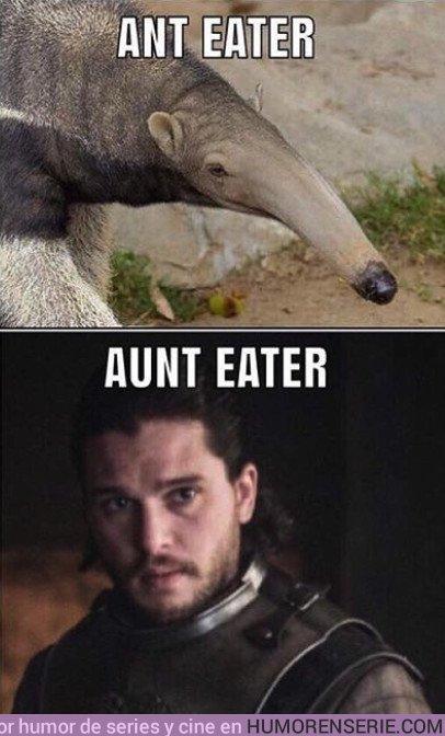 22272 - El animal que mejor representa a Jon Snow