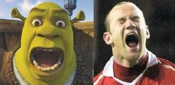 Enlace a Rooney vs Shrek