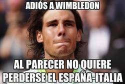 Enlace a Rafa Nadal dice adiós a Wimbledon