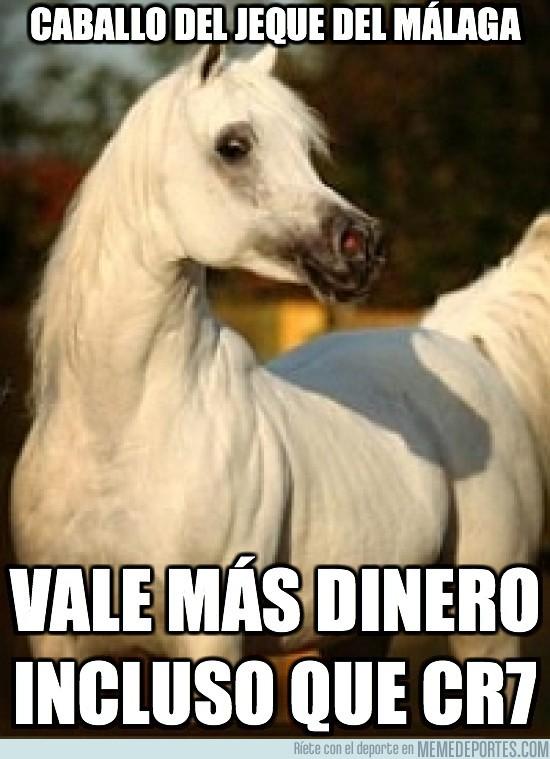 10005 - Este caballo tiene un valor superior a cualquier jugador de futbol