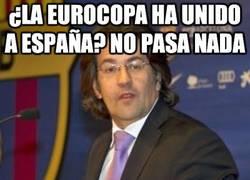 Enlace a ¿La Eurocopa ha unido a España?
