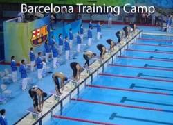 Enlace a Campo de entrenamiento del Barcelona