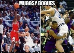 Enlace a Muggsy Bogues