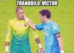 Enlace a Tranquilo Valdés