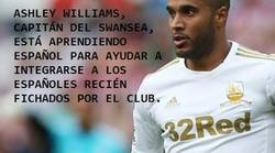 Enlace a Ashley Williams, un gran capitán