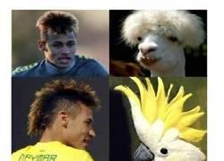 Enlace a Neymar y sus semejantes