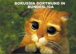 Enlace a Borussia Dortmund