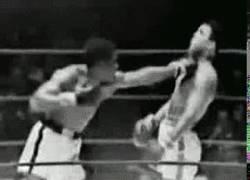 Enlace a GIF: Increíbles reflejos de Ali