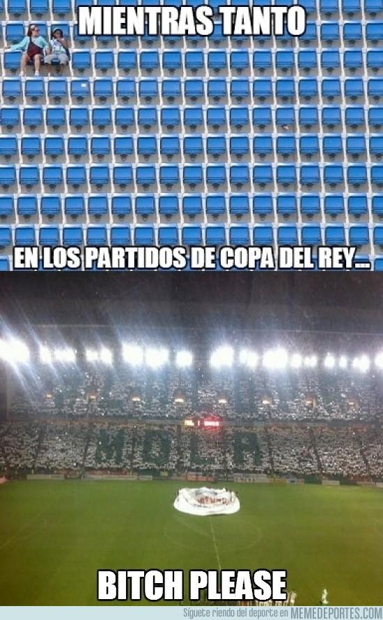 51995 - En Córdoba el campo estaba a petar