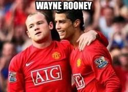 Enlace a Wayne Rooney