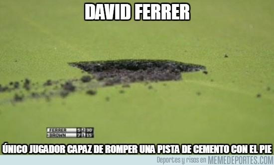 61207 - David Ferrer