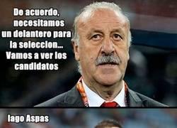 Enlace a Elegir un delantero para la selección. Nivel: Vicente Del Bosque