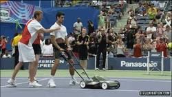 Enlace a GIF: A Djokovic se le va mucho la olla