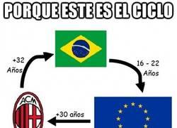 Enlace a El típico ciclo brasileño