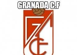 Enlace a Granada C.F