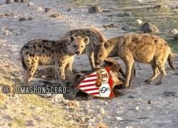 Enlace a El Real Madrid comiéndose al Sevilla, literalmente por @tomasron5ero