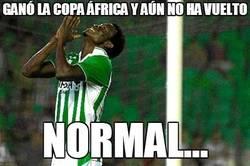 Enlace a En paradero desconocido después de ganar la Copa África