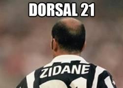 Enlace a Dorsal 21