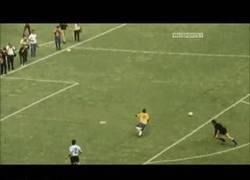 Enlace a GIF: La finta de pelé contra uruguay [demasiado remember]