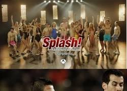 Enlace a Nuevos fichajes de Splash: Famosos al agua