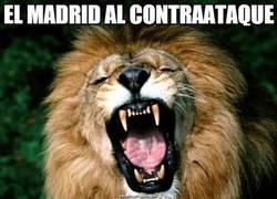 Enlace a El Real Madrid al contraataque