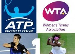 Enlace a Así están los rankings ATP y WTA