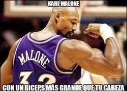 Enlace a Karl Malone