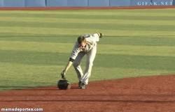 Enlace a GIF: Las técnicas que te enseña el baseball para cazar bichos