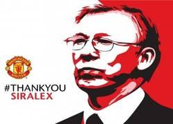 Enlace a Sir Alex Ferguson, descripción copera