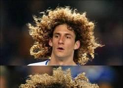 Enlace a Parecidos razonables entre Coloccini y David Luiz