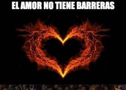Enlace a El amor no tiene barreras