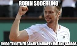 Enlace a Robin Söderling, el único que ha osado ganar a Rafa