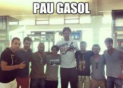 Enlace a Pau Gasol