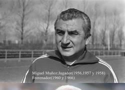 Enlace a Entrenadores que han ganado la Copa de Europa como jugador y entrenador