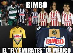 Enlace a Bimbo everywhere