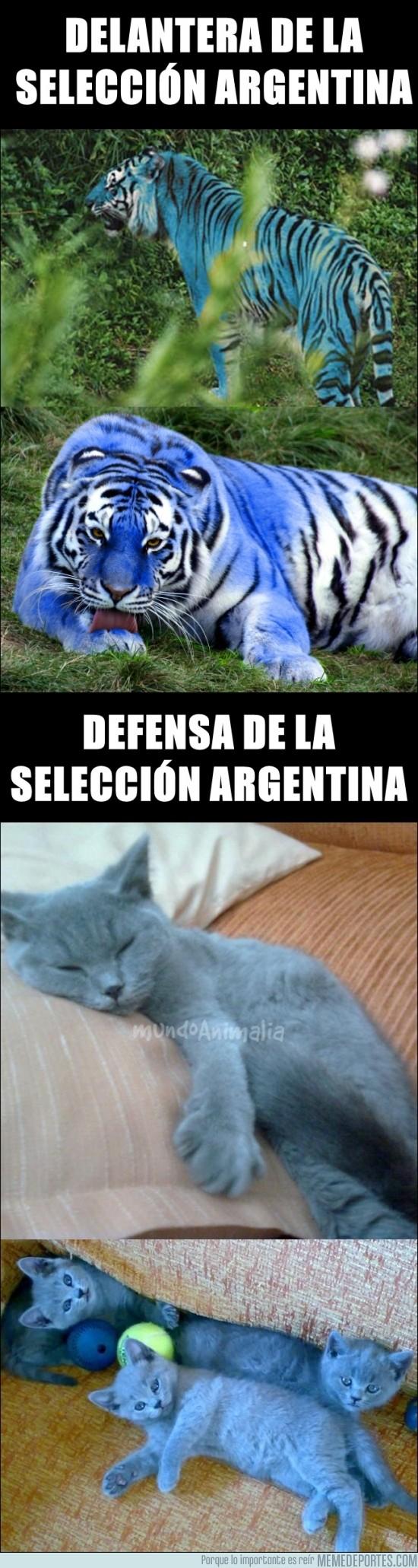 166052 - Así es la selección Argentina