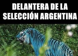Enlace a Así es la selección Argentina