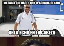 Enlace a Ramos y sus ideas