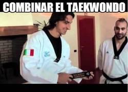 Enlace a Combinar el taekwondo