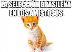 Enlace a La selección brasileña en los amistosos